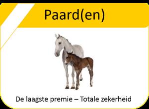 Paardenverzekering Agiohuys Elst